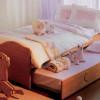 decoracion-dormitorios-ninos-cama-nido