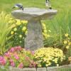Bebederos de jardin para aves