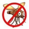 Cómo ahuyentar mosquitos sin necesidad de utilizar productos químicos