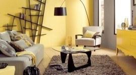 Cómo limpiar la energía de tu casa con el Feng Shui