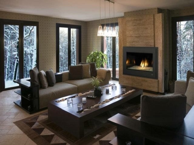 chimeneas-modernas-en-salon-marron
