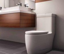 Bonitos Inodoros modernos y pequeños para el baño