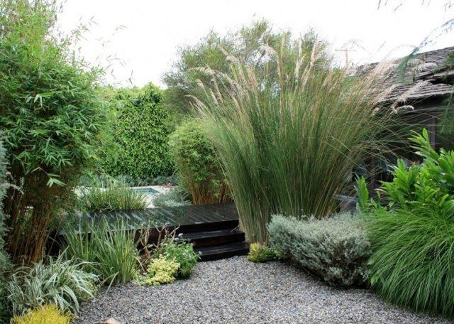jardines-zen-con-muchas-plantas