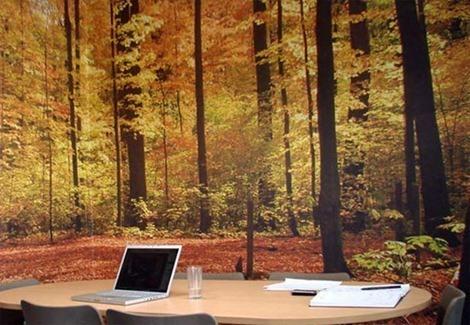 Decoracion oficinas for Decoracion de paredes para oficinas