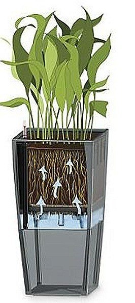 Self-Watering-Planter