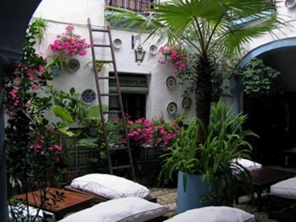 hostales-en-cordoba-con-patio-el-estilo-mas-andalusi