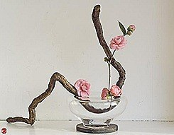 ikebana-036-zen-images-ikebana-art-by-baiko
