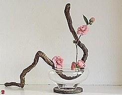 ikebana-036-zen-images-ikebana-art-by-baiko