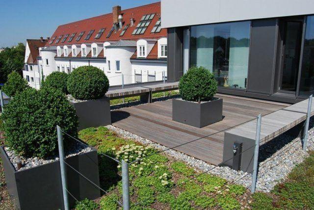 jardn y terraza en el techo de una casa