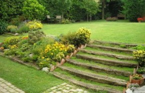 El cuidado del césped jardín