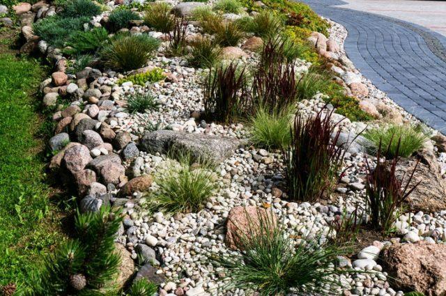 Rocalas en pendiente hierbas