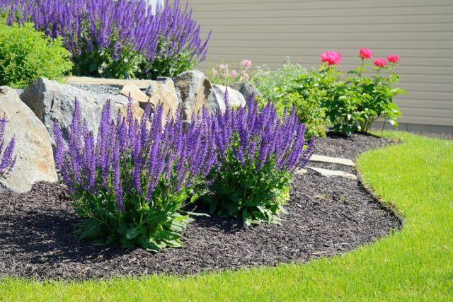 Ideas para la decoracion con piedras rocalla arbustos aromaticos