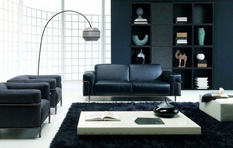 living-room-natuzzi-frank