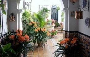Decoracion de patios interiores