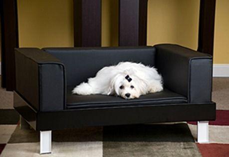 luxurydogsofa