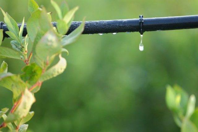 Tipos sistemas de riego por goteo