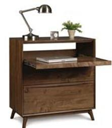 Catalina Laptop Desk-b