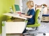height-adjustable-desks-moll-booster-5