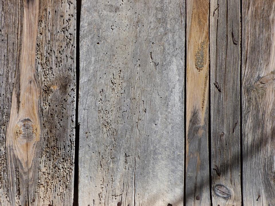 C mo eliminar carcoma de los muebles tratamientos contra los insectos de la madera - Carcoma en los muebles ...