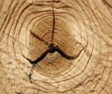 Grietas en la madera