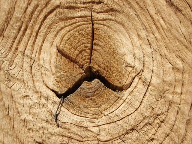 Grietas en la madera - Como tratar la madera ...