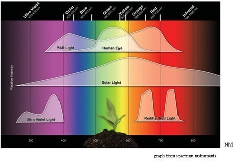 Cómo medir la iluminación en Lux