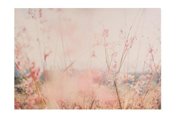 cuadros-leroy-merlin-modelos-2015-cuadro-paisaje