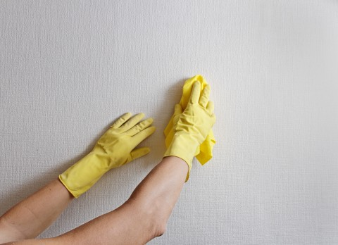 wall-cleaning