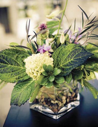 Center-table-modern-plants