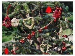 Decoración de árboles de Navidad 2014