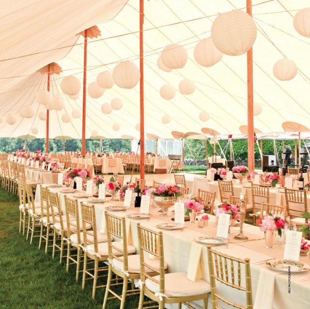 como-elegir-una-carpa-para-una-boda-carpa-rosa