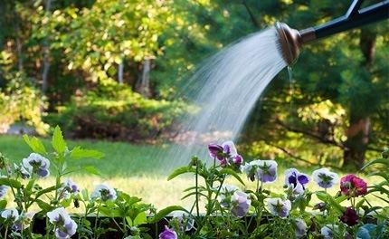 C mo ahorrar agua en el hogar for Ideas para ahorrar agua
