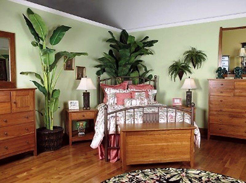Plantas de interior fotos plantas para el dormitorio - Plantas de interior fotos ...