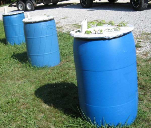 como-construir-un-jardin-de-macetas-auto-riego-en-un-barril