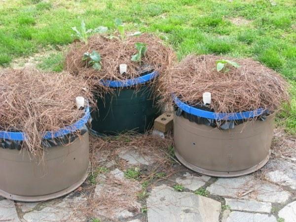 video-como-construir-un-jardin-de-macetas-auto-riego-en-un-barril-pequeños-barriles
