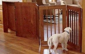 Verjas o cercos elegantes para que el perro no pase