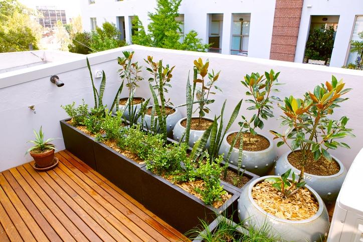 Catalogo bricorama junio aire libre terraza plantas