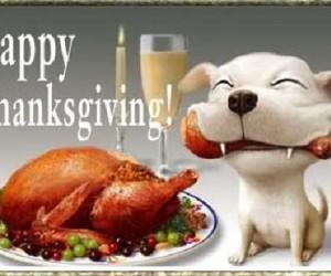 Los mensajes más divertidos de Acción de Gracias – Thanksgiving Day