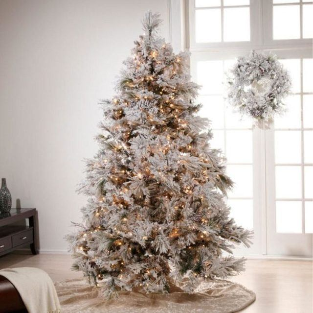 Christmas trees-elegant-on-white