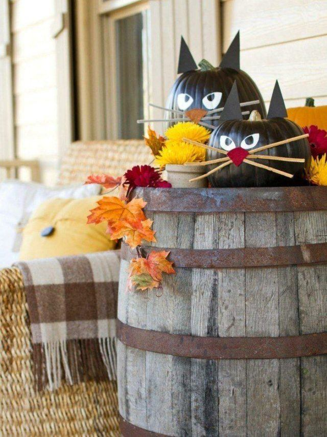 calabazas-decoradas-gatos-negros
