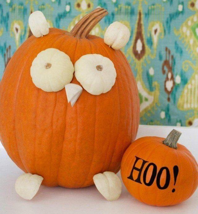 Decoration-halloween-pumpkin-owl-small-pumpkins