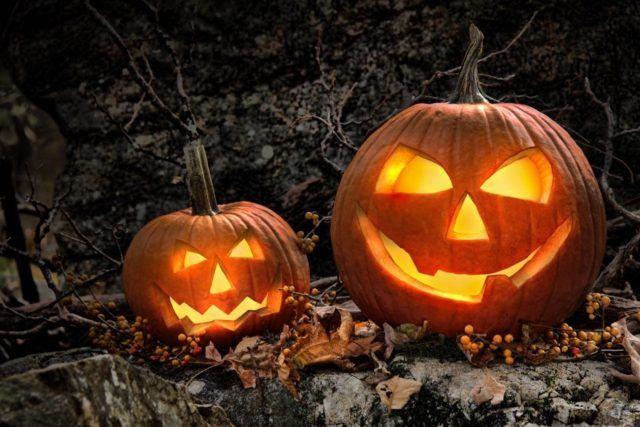 decorar-tu-jardin-en-halloween-con-calabazas