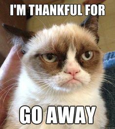 mensajes-graciosos-de-accion-de-gracias-con-grumpy-cat