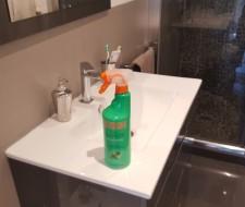 Productos de limpieza del hogar: Probamos zas! Baños