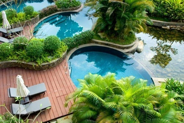 Decorate-a-garden-with-pool-palm trees