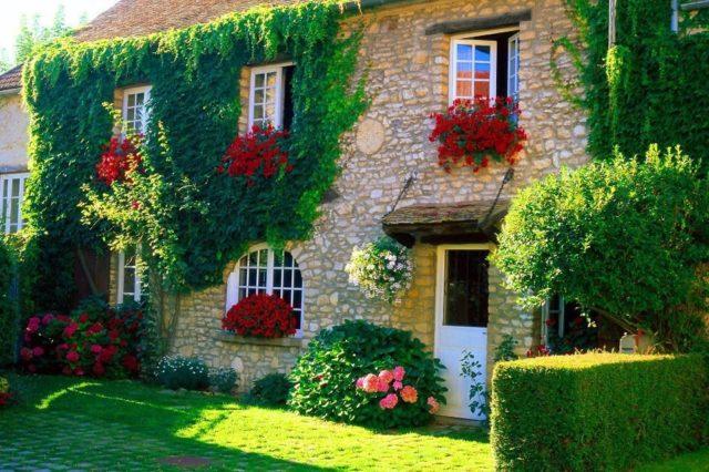 casa-rustica-con-flores-y-plantas-trepadoras