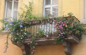 Decoracion de Balcones