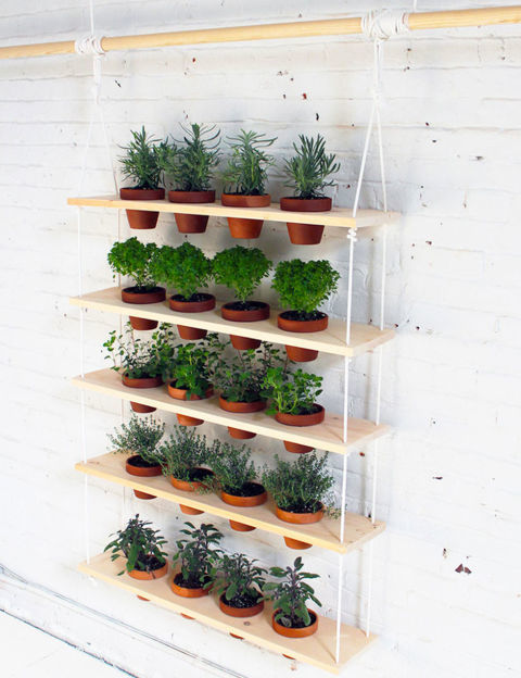 cmo hacer jardines verticales en casa