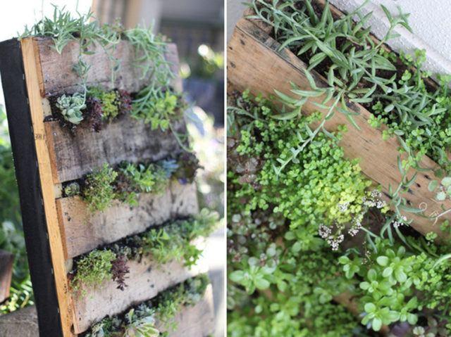 De 10 ideas de c mo hacer jardines verticales en casa - Como hacer jardines verticales ...
