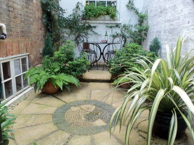 10 ideas de jardines para patios interiores for Arbustos de interior